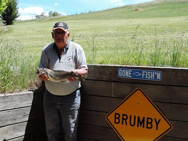 Bruce & Fish